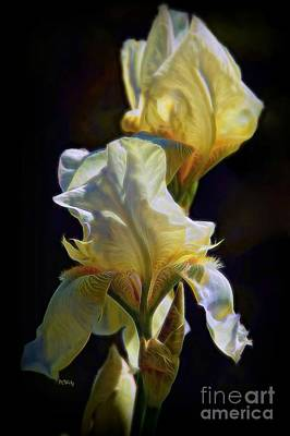 Photograph - Iris by Patrick Witz