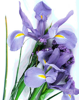 Photograph - Iris -- Pretty In Purple-2 by Larry Oskin