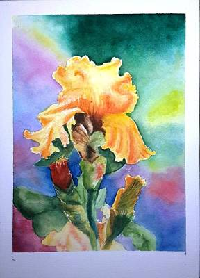 Iris Sold Art Print