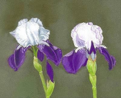 Iris Art Print by Ruth Seal