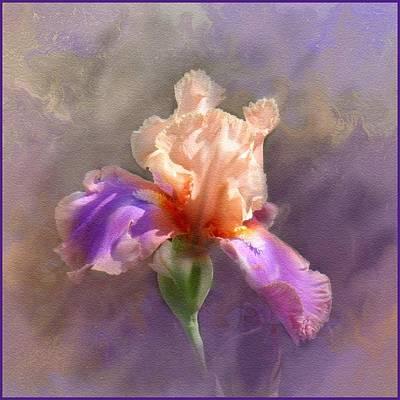 Iris Digital Art - Iris Sentimental Rose by Linda Seifried