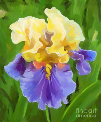 Painting - Iris-yellow And Purple by Tim Gilliland
