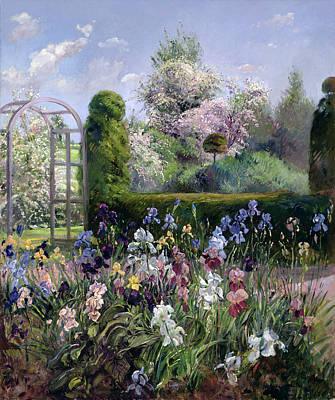 Irises In The Formal Gardens, 1993 Print by Timothy Easton