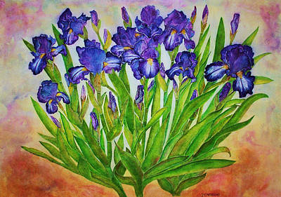 Painting - Irises by Janet Immordino
