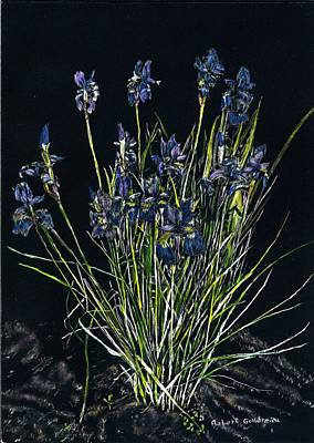 Painting - Irises by Robert Goudreau
