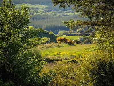 Photograph - Irish Countryside In Spring by James Truett