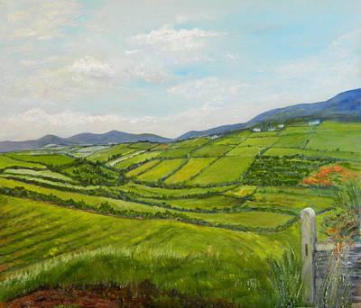 Irish Fields - Landscape Art Print by Sandra Nardone