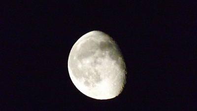 Irish Moon Original