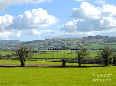 Irish Spring Art Print by Suzanne Oesterling