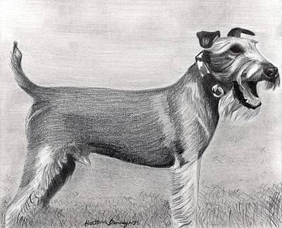 Irish Terrier Dog Portrait Art Print by Olde Time  Mercantile