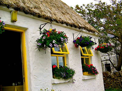 Photograph - Irish Window Boxes by Denise Mazzocco