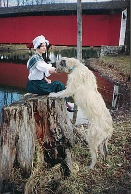 Terre Haute Indiana Photograph - Irish Wolfhound Stump Of Visitation by R John Ferguson