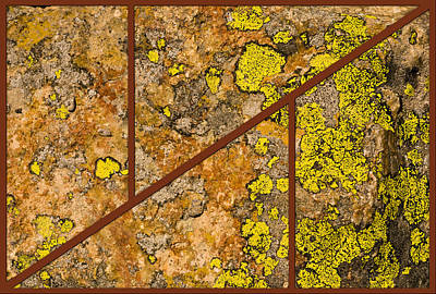 Photograph - Iron And Lichen by Gene Norris
