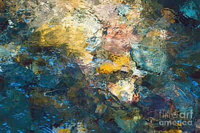 Iron Creek Bottoms Art Print