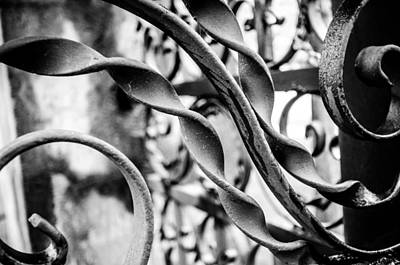 Photograph - Iron Gate At The Brucemore Mansion by Anthony Doudt