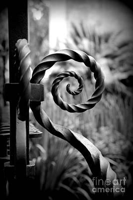 Photograph - Iron Gate by Carol Groenen