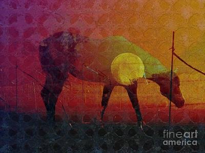 Sunset Abstract Photograph - Iron Horse by Robert Ball