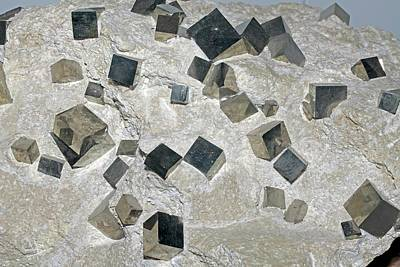 Pyrite Photograph - Iron Pyrite by Dirk Wiersma
