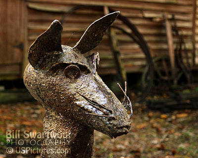Photograph - Iron Rat At Furnace Town by Bill Swartwout