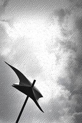 Photograph - Iron Umbrella by Nadalyn Larsen