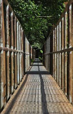 Photograph - Iron Walkway by Dave Hall