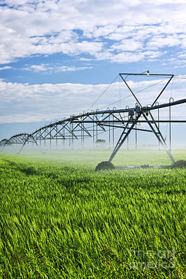 Automated Photograph - Irrigation Equipment On Farm Field by Elena Elisseeva