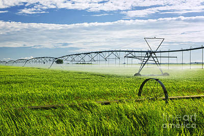 Farm Photograph - Irrigation On Saskatchewan Farm by Elena Elisseeva