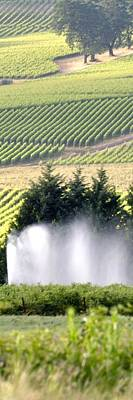 Jerry Sodorff Royalty-Free and Rights-Managed Images - Irrigation Sprinkler 25192 by Jerry Sodorff