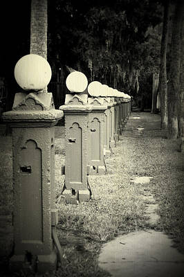 Photograph - I's In A Row by Laurie Perry