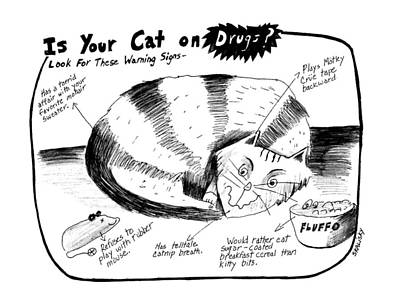 Warning Drawing - Is Your Cat On Drugs?  Look For These Warning by Stephanie Skalisk