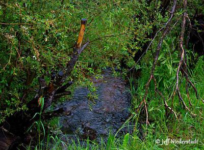 Photograph - Isabel Creek by Jeff Niederstadt