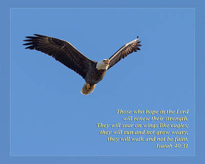 Photograph - Isaiah 40 31 by Dawn Currie