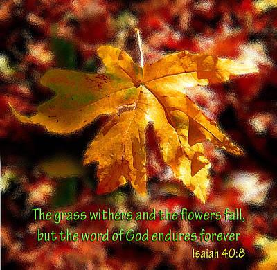 Isaiah Autumn Leaf Art Print by Michele Avanti
