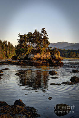 Black Creek Nature Sanctuary Photograph - Island At Salt Creek by Sarah Schroder