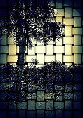 Photograph - Island Beach Weave 1 by Sheri McLeroy