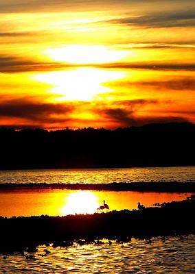 Photograph - Island Blaze by Sheri McLeroy