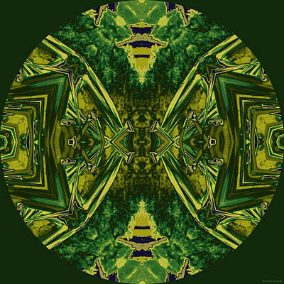 Abstractions From Nature Digital Art - Island Circle 12 by Kenneth Grzesik
