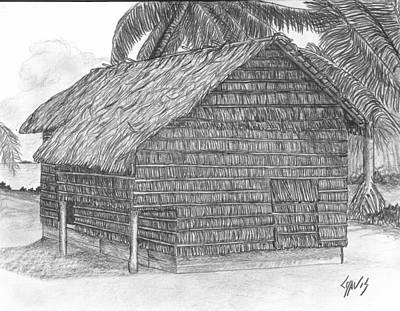 Drawing - Island House 12 by Lew Davis