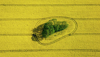 Agricultural Photograph - Island In The Field by Holger Schmidtke