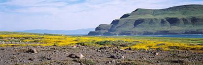 Santa Cruz Island Photograph - Island In The Pacific Ocean, Santa Cruz by Panoramic Images
