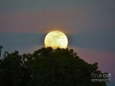 Photograph - Island Moon 2 by Judy Via-Wolff