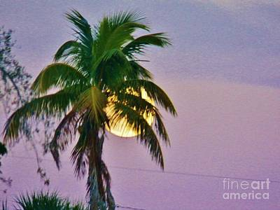 Photograph - Island Moonrise 1 by Judy Via-Wolff