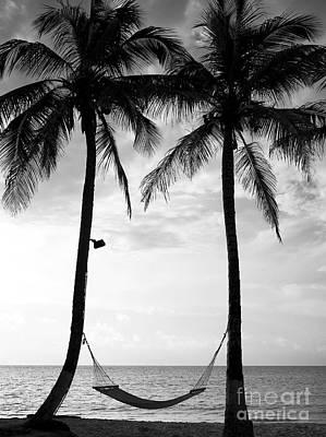 Photograph - Island Nap Time by John Rizzuto