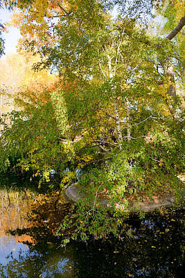 Photograph - Island Of Autumn by Robert Meyers-Lussier