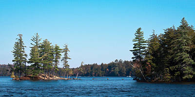 Island On The Fulton Chain Of Lakes Art Print by David Patterson