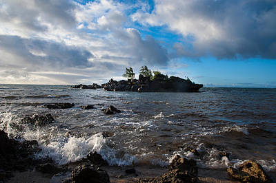 Photograph - Island Paradise by Harry Spitz