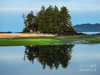 Island Reflection Art Print by Robert Bales