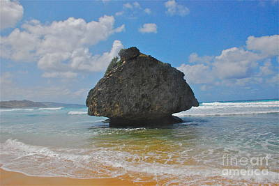 Art Print featuring the photograph Island Rock by Blake Yeager