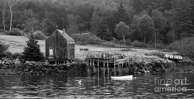Photograph - Island Shoreline In Black And White by Glenn Gordon