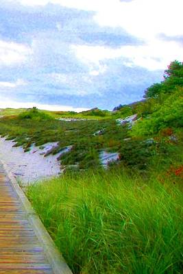 Island State Park Boardwalk Art Print by Pamela Hyde Wilson